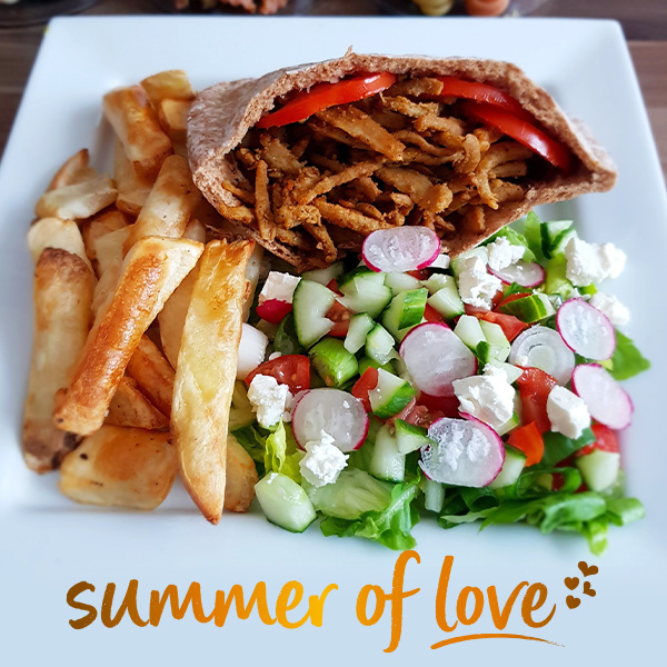 Vegan kebab with chips and salad